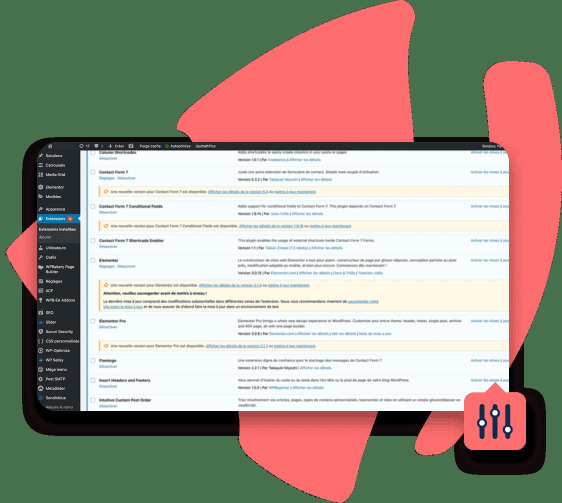 Maintenance de site web